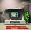 雅美居板式柜体系列-电视柜