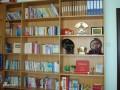 书柜 科威斯柜体